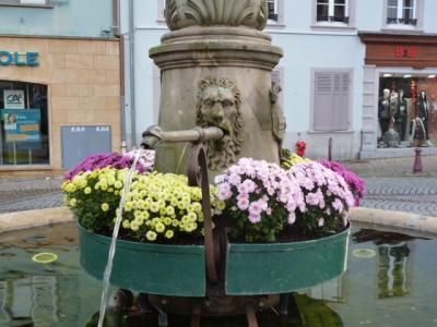 fontaineathann